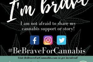 #BeBraveForCannabis Social Media Campaign