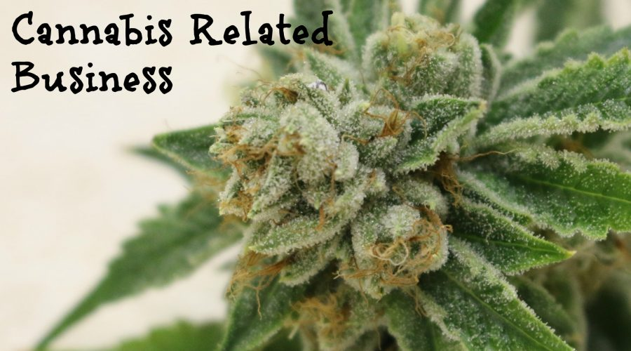 Tips for Enhancing SEO for Your Cannabis Related Business