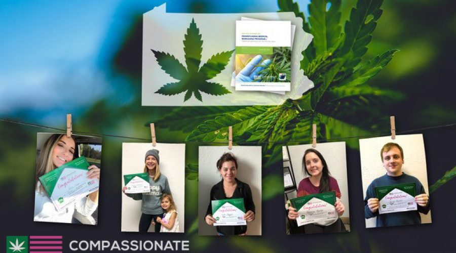 Compassionate Certification Centers, Affinity Bio Partners and AI Health Outcomes (CannaBot™) Announce the Final Results of Patient-Focused Medical Marijuana Research Study