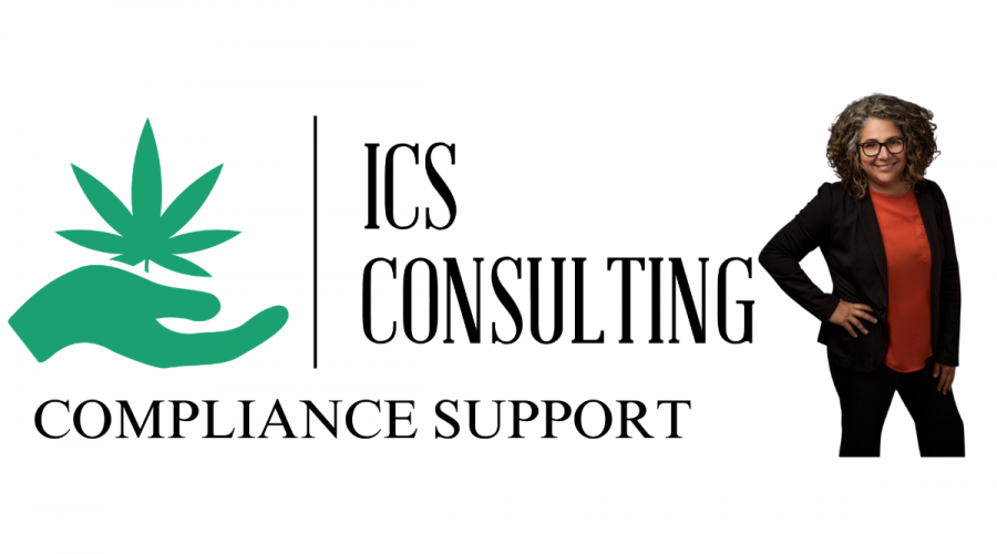 ICS Consulting – Compliance Support